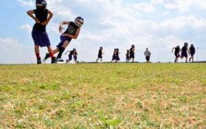 Watering the field