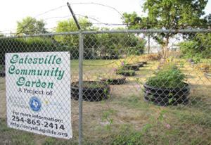 Gatesville community garden