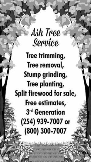 Ash Tree Service | 254-939-7007 | Belton