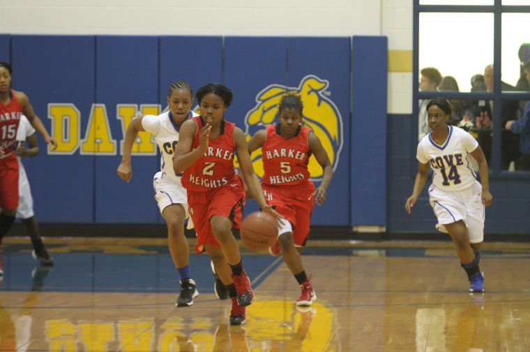 GBB Cove v Heights 62.jpg