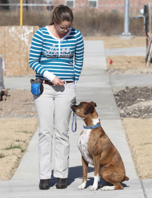 Biz Twist Of Fate Dog Training.Jaime Villanueva 003.jpg: Leslie Dalton, owner of Twist of Fate Dog Training, walks her dog Barley on Friday afternoon in Killeen. - Jaime Villanueva