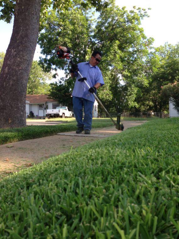 CW Lawn 2
