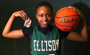 Ellison Guard Deja Pointer
