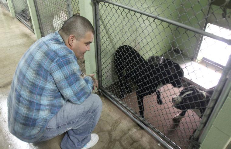 Killeen Animal Control