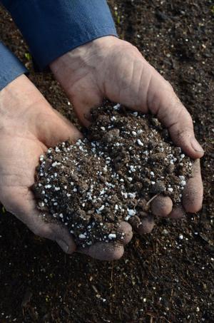 Perlite in soil
