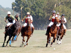 Benefit polo match helps raise for equestrian therapy facility