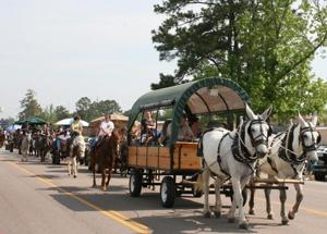 Silver Anniversary Magnolia Festival was golden for Kirbyville