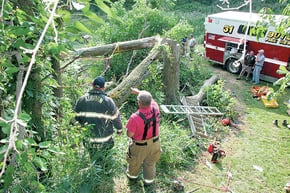 Man injured in tree-cutting accident