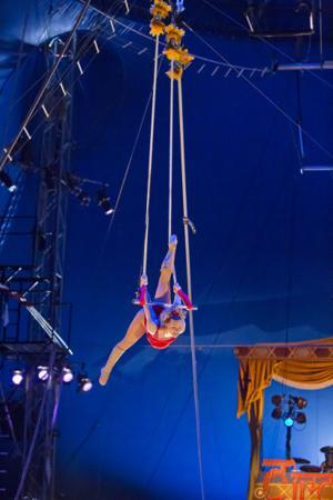 Circus Flora 3