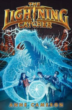 TheLightningCatcher