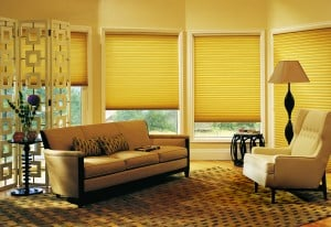 h6-showme_blinds_0113.jpg