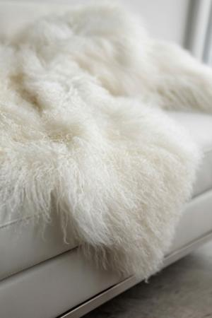 4 Eighteen Karat sheepskin.jpg