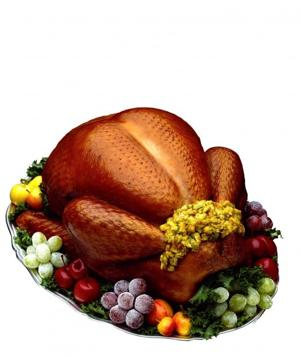 1116-turkey.jpg