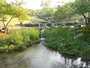Big Cedar Lodge Falls 1