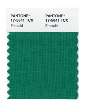 6 Pantone 2013 color of the year.jpg