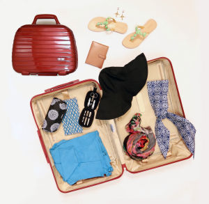 The Stylish Traveler - Products