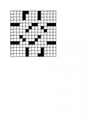 110212-div-crossword