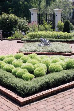 A Garden of Box and Bay