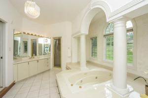 038-Master_Bathroom-739724-print.jpg