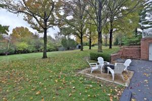 113 Hawthorne Estates-Yard.jpg
