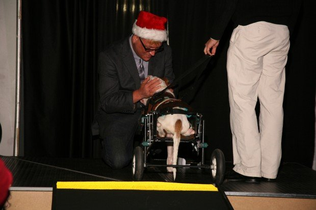 15th Annual Hope for the Holidays Gala