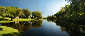Rice Mill Pond landscape at Middleton Place.jpg