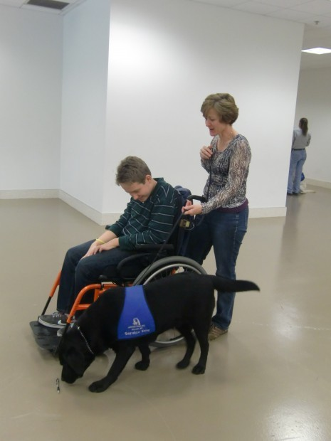 SupportDogs-training-100512