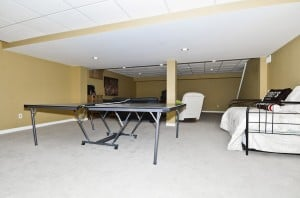 dp-basement_0914.jpg
