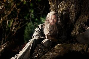 122112-div-hobbit