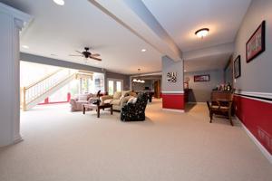 4207 Austin Ridge Drive basement.jpg