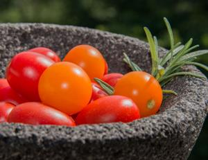 Tomatoes & Rosemary