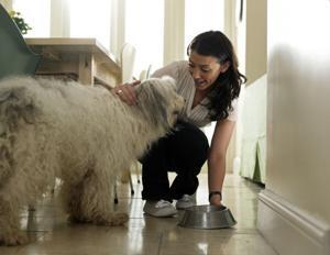 080814-liv-Pets 3-Pet Sitter Prep