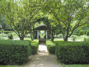 Garden path to summerhouse.jpg
