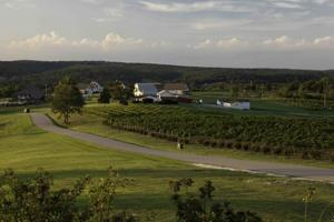 Chaumette Vineyard