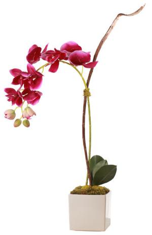 spring accessory_orchid.jpg