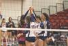 Volleyball earns 2014 NCAA bid