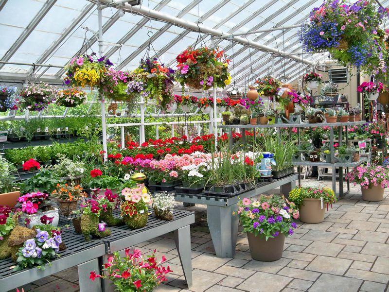 Create Your Own Greenhouse Crawl Gardening