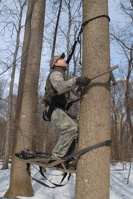 Safety And Tree Stands Sports Lancasteronline Com