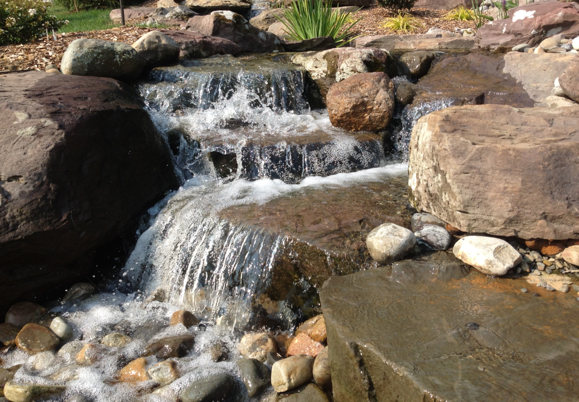Pontz Pond and Garden Tour