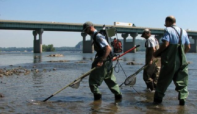 Outdoors action to save susquehanna bass may be on way for Pa fish and boat