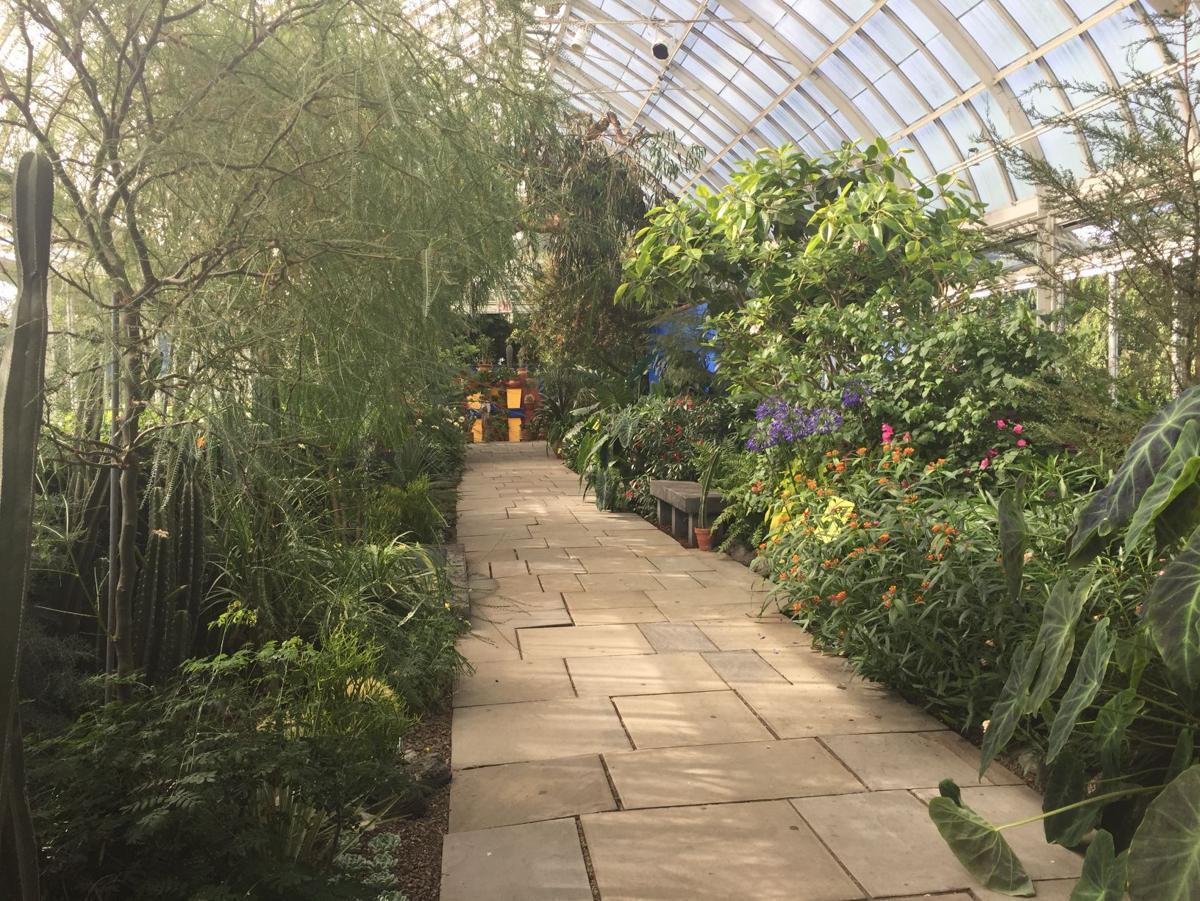 Walk Through Frida Kahlo 39 S Garden In New York Home Garden