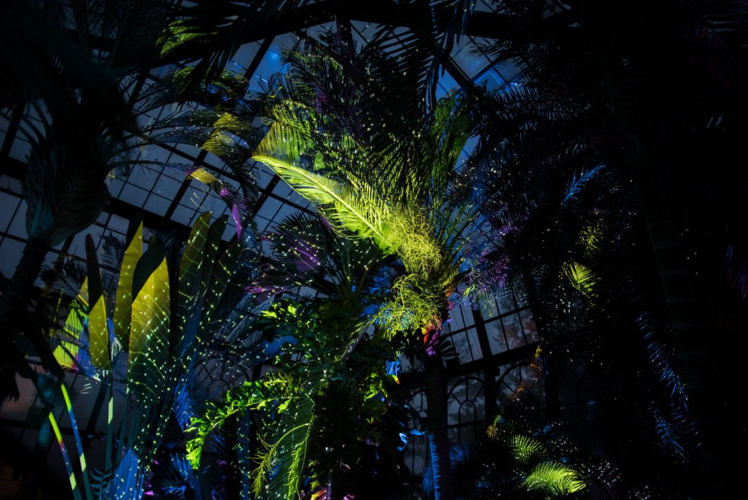 Longwood Gardens Lights Up The Night With Nightscape Entertainment