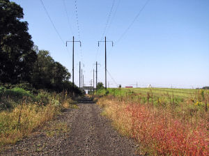 A reporter bicycles the old Enola railroad line and finds a treasure on a BEATEN PATH
