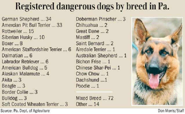 Vicious Dog Breeds List