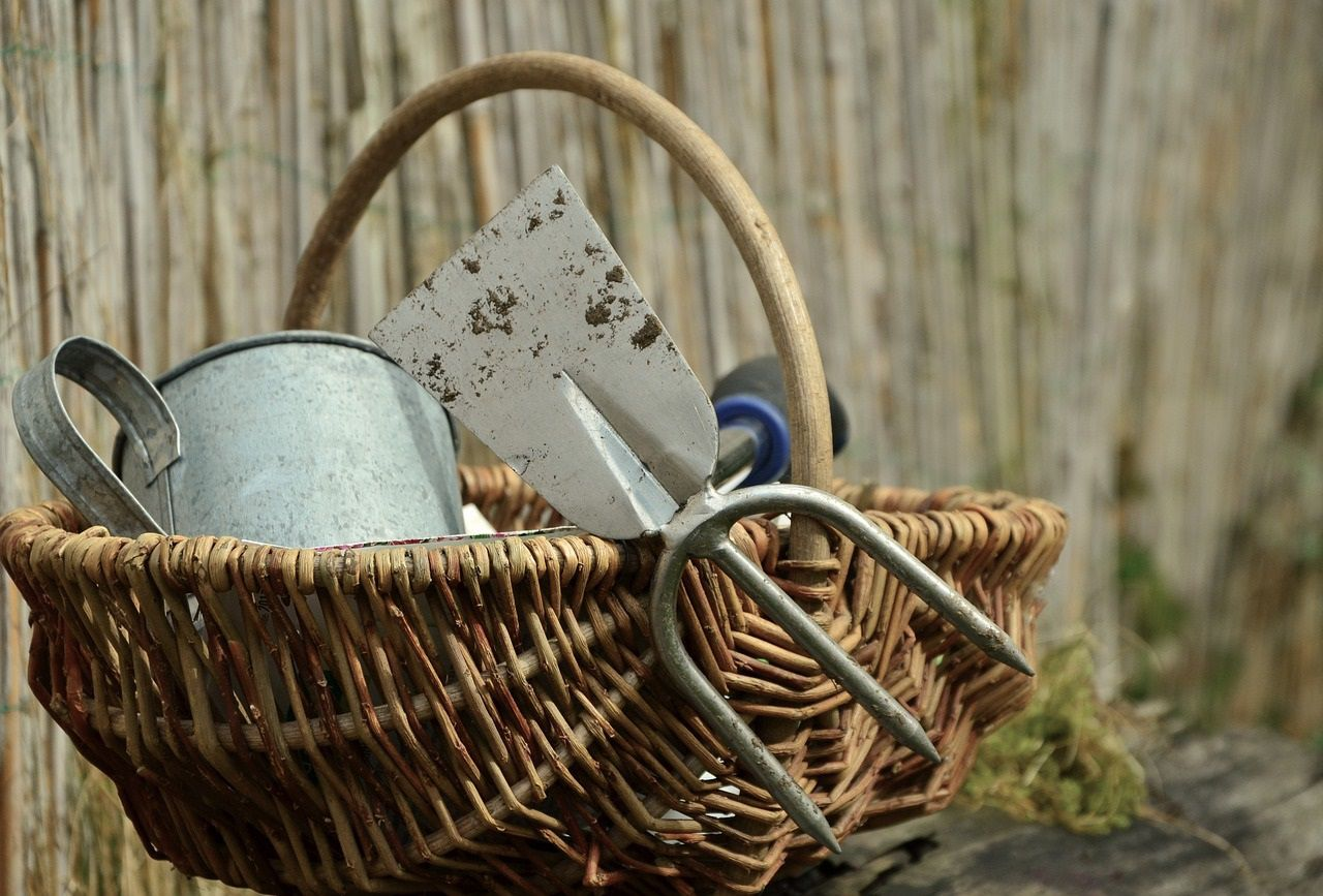 September\'s garden events: Wildflowers, vintage tools and the \'post ...