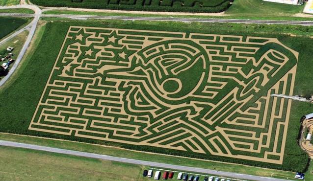 Tips Amazing Maize Maze Antiques Stevie Nicks Entertainment Lancasteronline Com