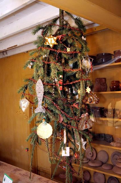 Living Christmas Tree Rental