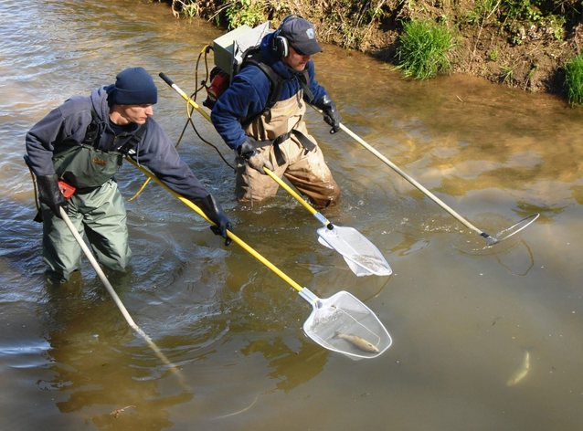 Taking stock of stocked trout sports for Pa fish and boat