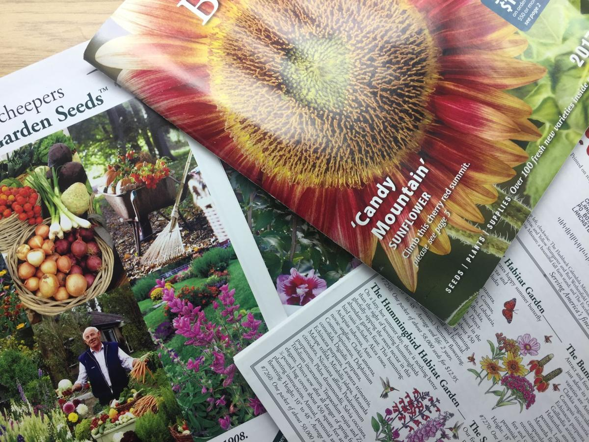 The Best Seed And Gardening Catalogs Share Your Favorites