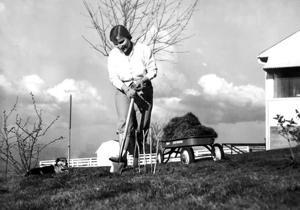 Mid-1950s: Doing the garden